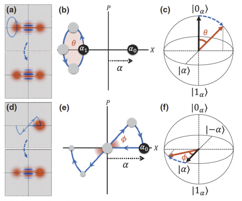 Wigner function, phase space diagram, Bloch sphere representation of holonomic control of quantum inforamtion encoded in the oscillator